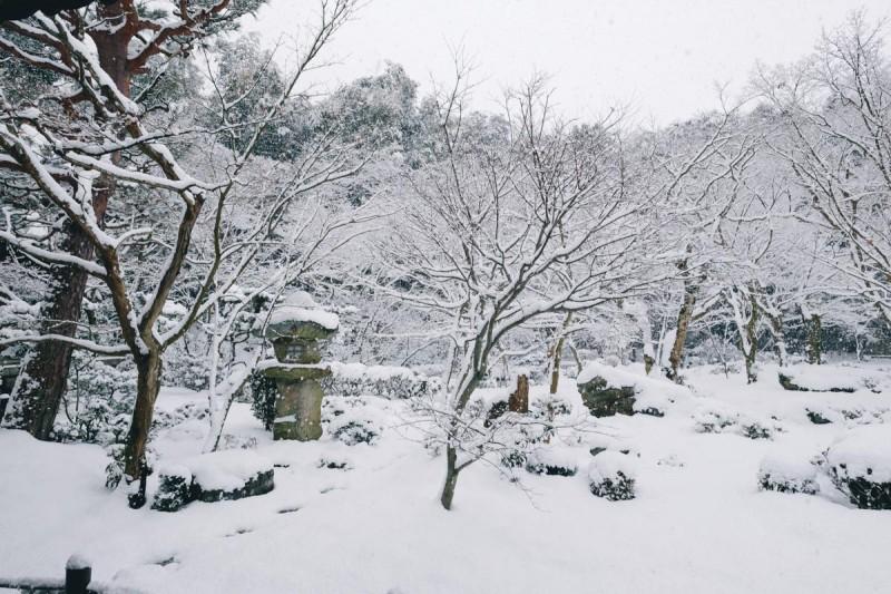 2016年 雪の京都