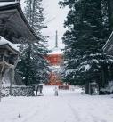 2016年 雪の和歌山