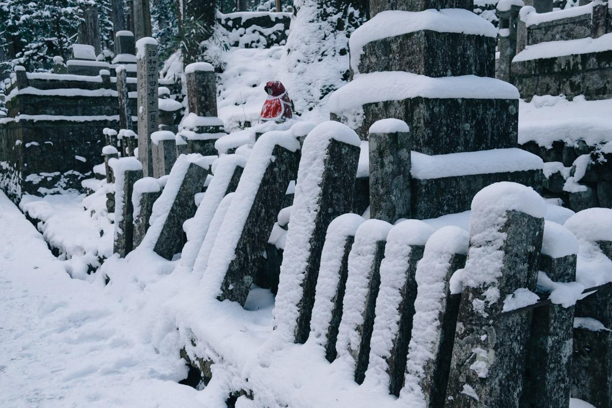 yuji_hirai_waka-002