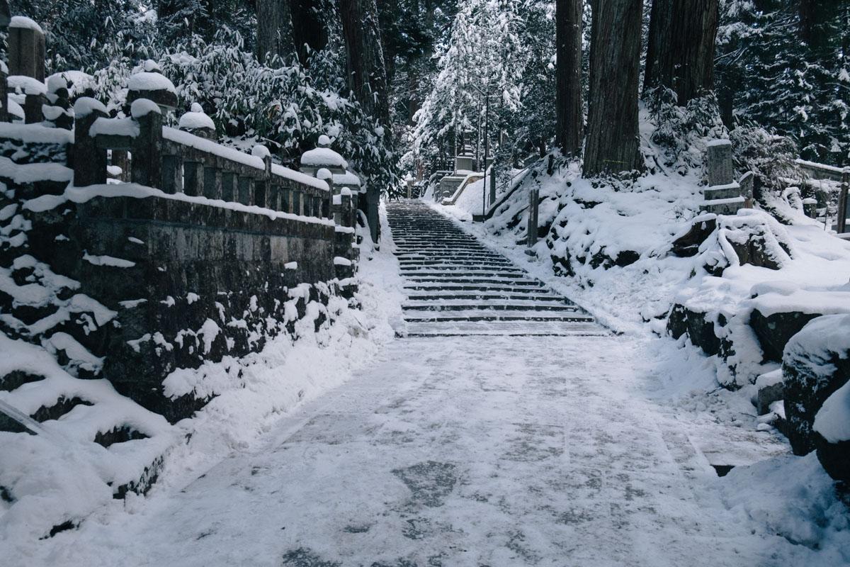 yuji_hirai_waka-016