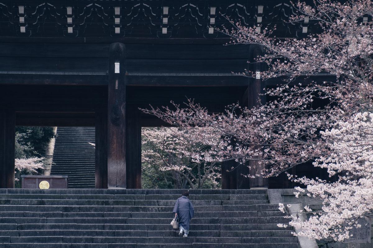 yuji_0414-08