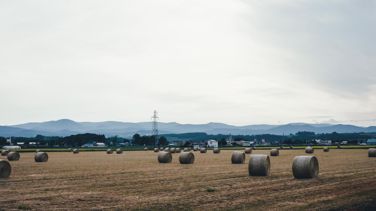 TakashiYasui-Hokkaido-01