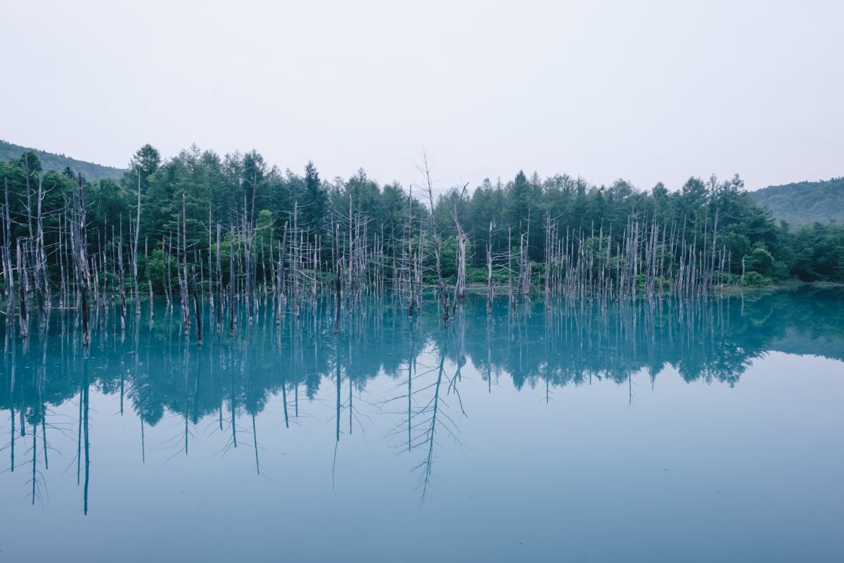 TakashiYasui-Hokkaido-11