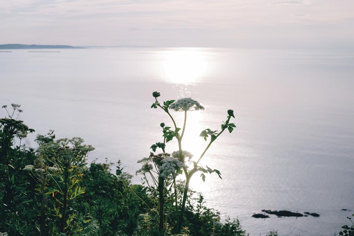 TakashiYasui-Hokkaido-49