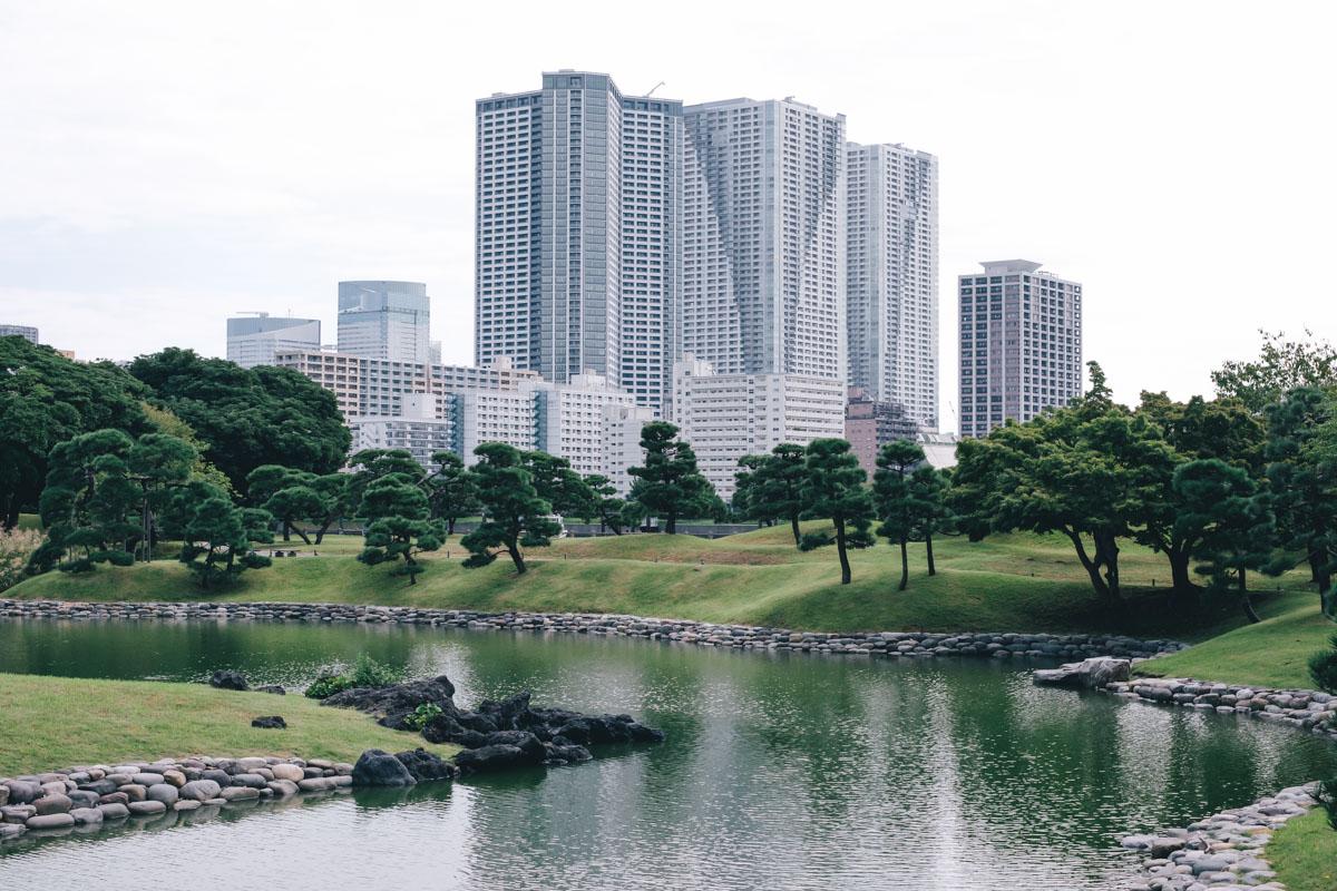 takashiyasui-dscf6446