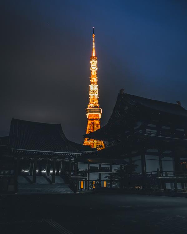 takashiyasui-dscf7842