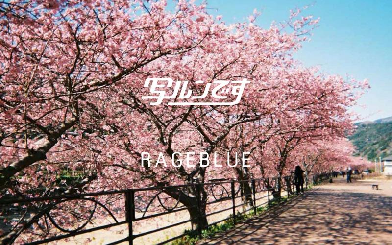 TakashiYasui- 2017-03-18 14.37.40-2
