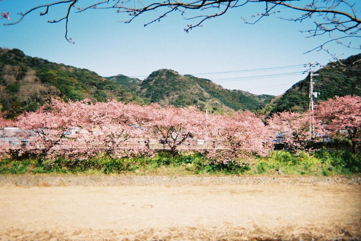 TakashiYasui-FH000015