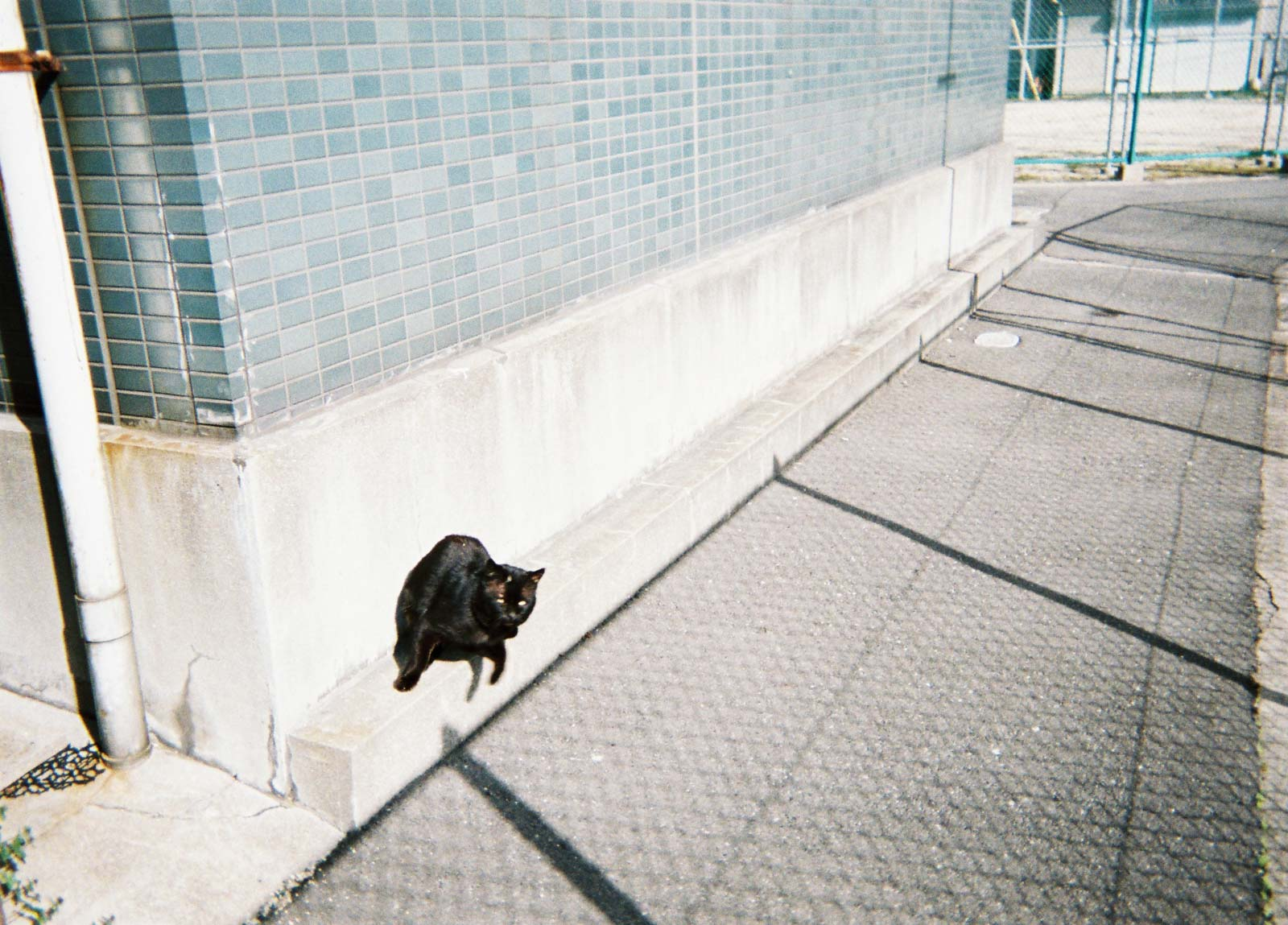 utsuru_mik_snap-003