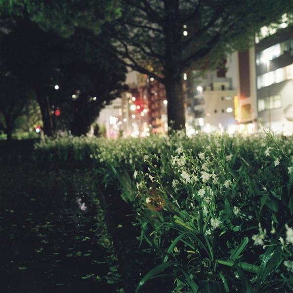 hisa-0084