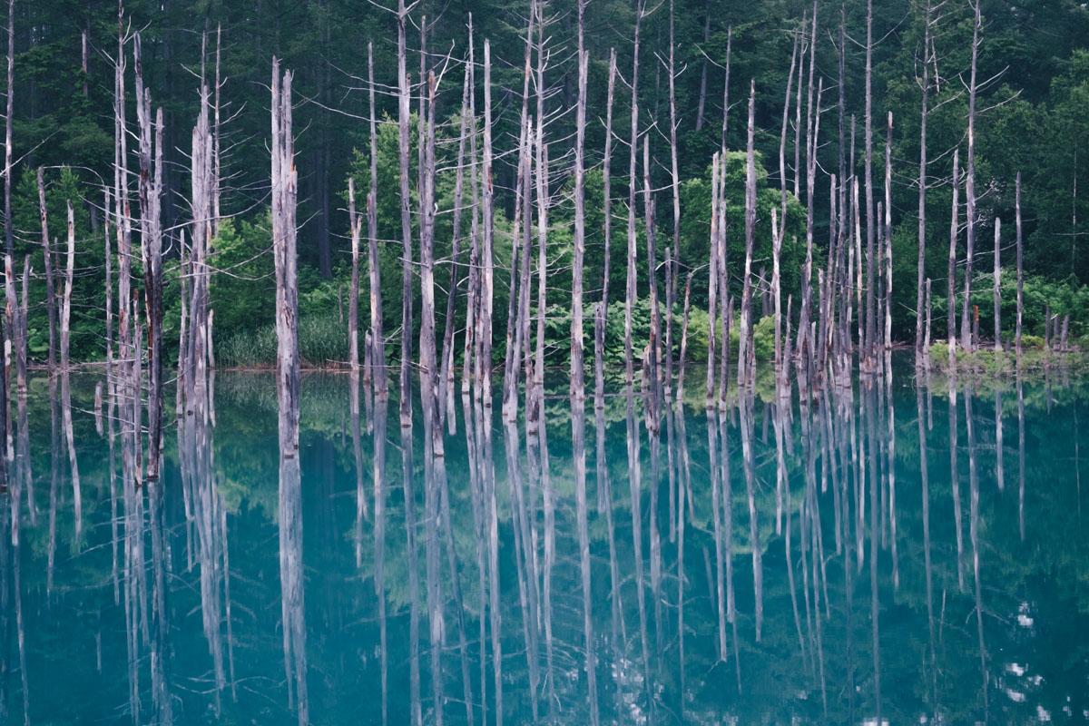 TakashiYasui-Hokkaido-12