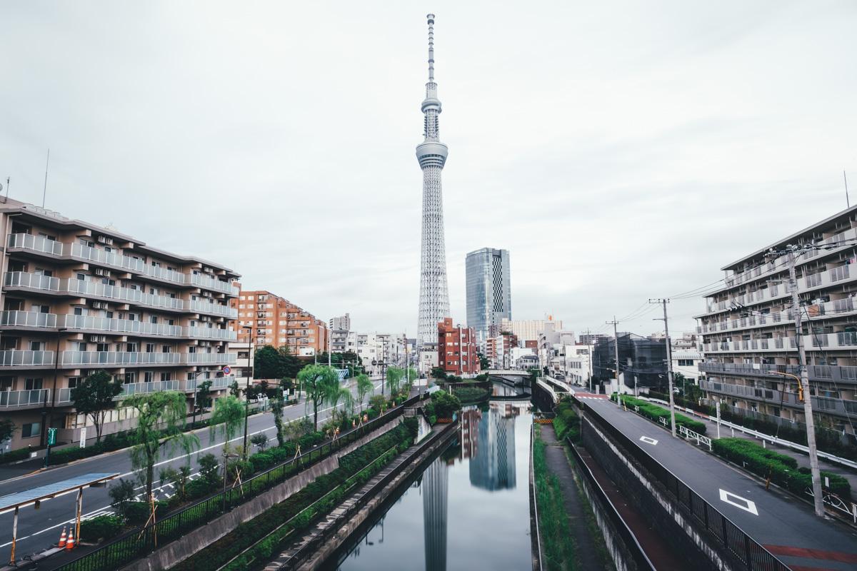takashiyasui-dscf5689
