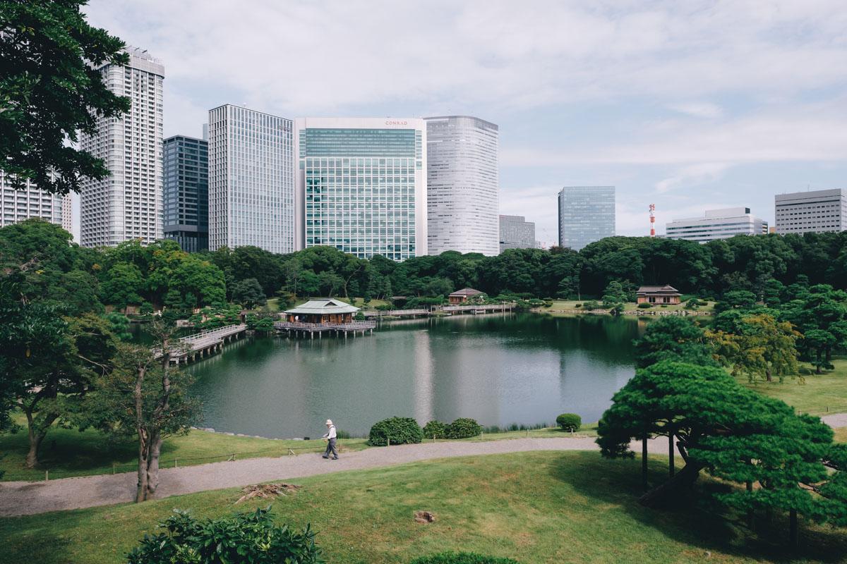 takashiyasui-dscf6441