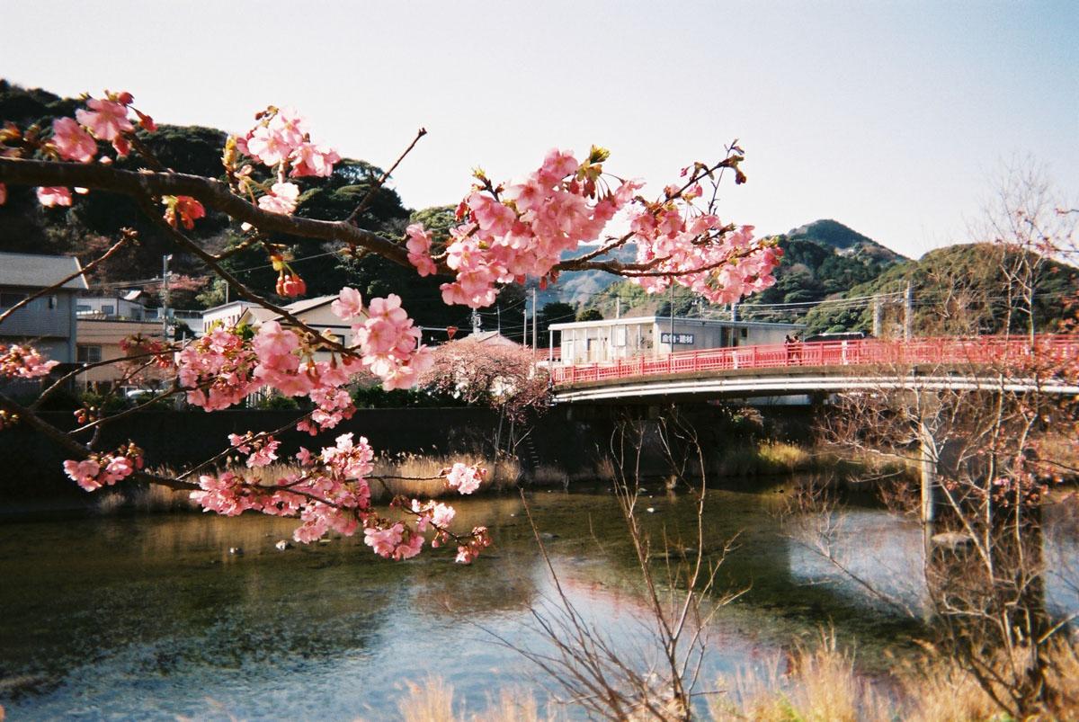 TakashiYasui-FH000010
