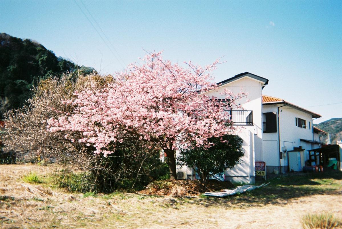TakashiYasui-FH000016
