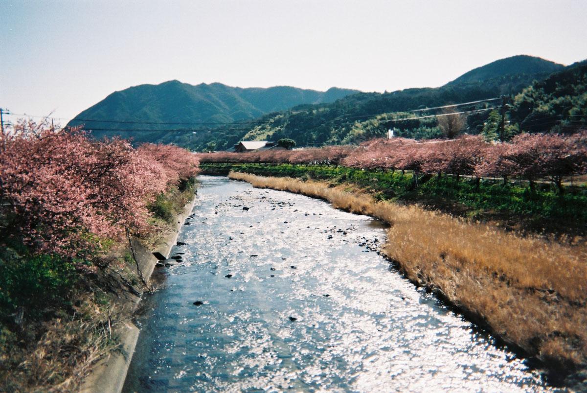 TakashiYasui-FH000021
