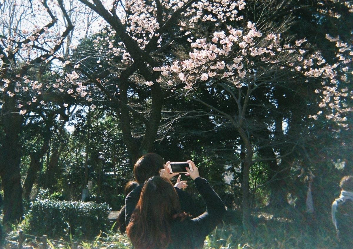 TakashiYasui-FH000044