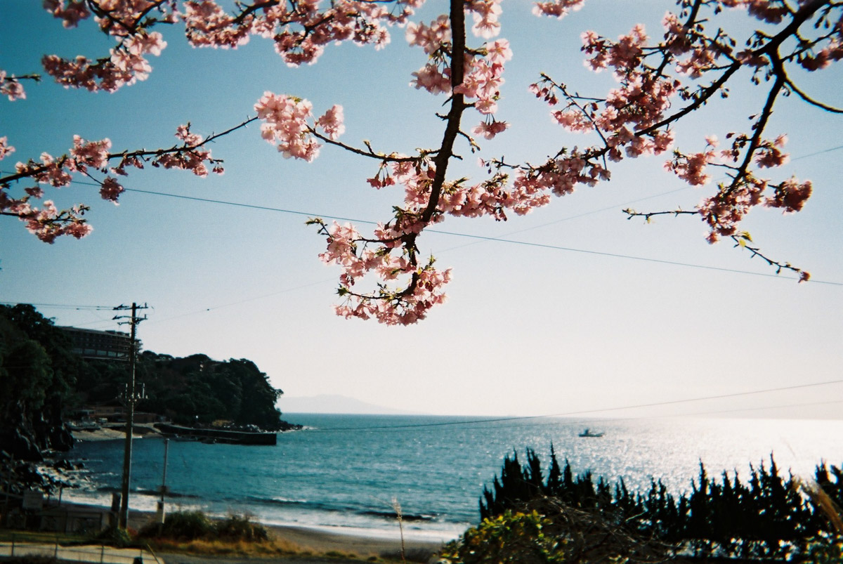 TakashiYasui-FH030017